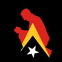 Parceiros de Timor Leste