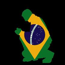 Parceiros de Brasil
